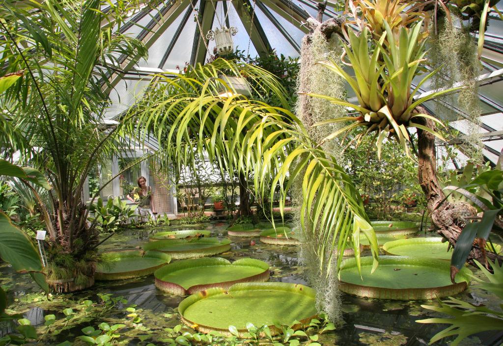 Botanischer Garten in Halle